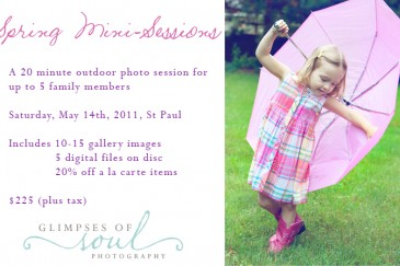 spring photography mini-sessions in st paul