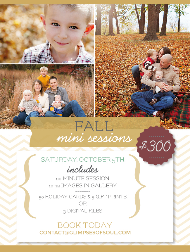 Fall Mini Session Info